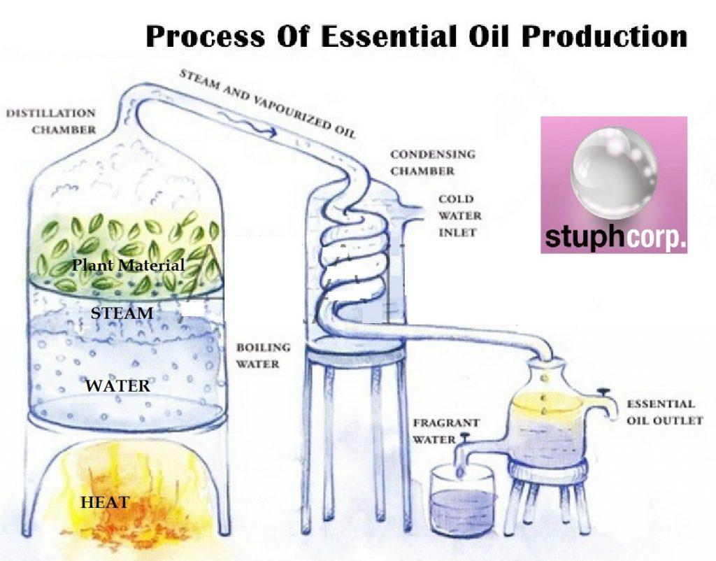 Stuph offers high-quality, food-grade nano-emulsifiers to formulate essential oil-in-water (O/W) nanoemulsions. Stuph nanoemulsions have a clear, treansparent appearance and a great taste!